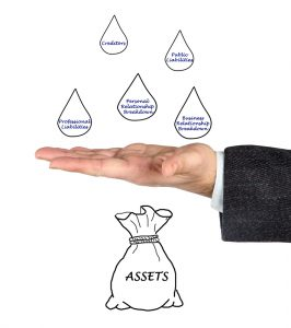asset protection planner lawyer