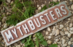 Busting Common Trust Myths
